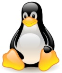 Linux Kernel vs 3.0 RC1