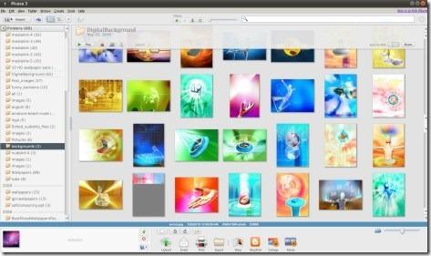 picasa-ubuntu-1010