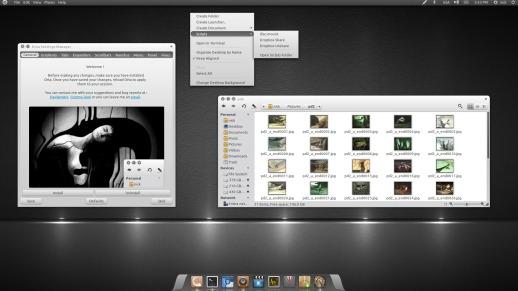 ubuntu themes -orta