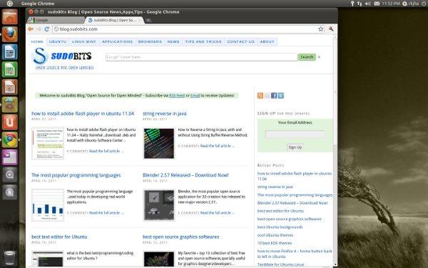 google-chrome-on-ubuntu-11.04
