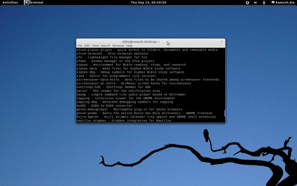 Ubuntu 11.10 with Gnome shell
