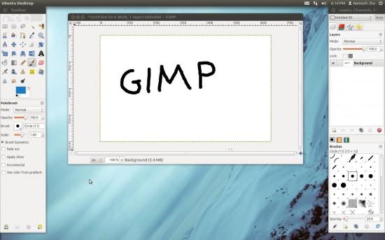 gimp-snapshot