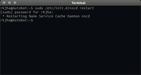 nscd-restart